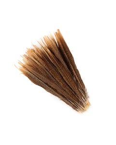 "Golden Pheasant Tails Natural - 14 - 16"""