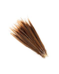 "Golden Pheasant Tails Natural - 16 - 18"""