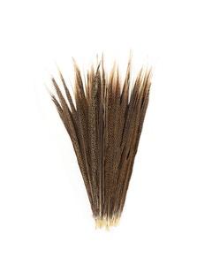 "Golden Pheasant Tails Natural - 20 - 25"""