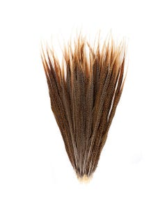 """Golden Pheasant Tails Natural - 25"""" and Up"""