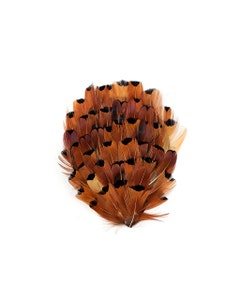 Heart Ringneck Feather Pad - Natural