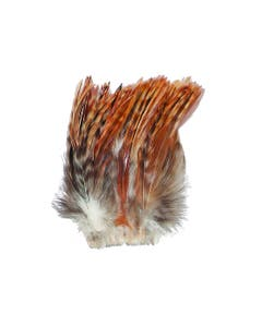 Strung Red Chinchilla Hackle - Natural