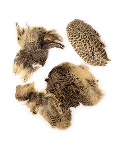 Ringneck Pheasant Hen Skin pieces