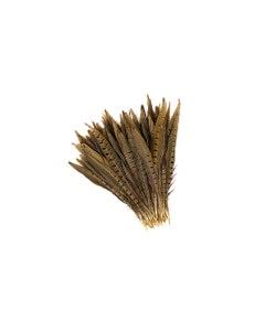 """Ringneck Pheasant Tails - Natural - 8 - 10"""""""