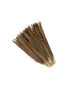 """Ringneck Pheasant Tails - Natural - 12 - 14"""""""