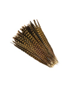 """Ringneck Pheasant Tails - Natural - 14 - 16"""""""