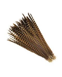 "Ringneck Pheasant Tails - Natural - 18-20"" - 100pcs"