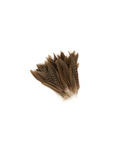 """Ringneck Pheasant Tails - Natural - 6 - 8"""""""