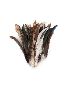 """Natural Chinchilla-Rooster Coque Tail Feathers -7 -10"""" - Natural"""