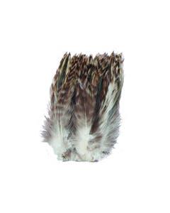 Strung Grey Chinchilla Hackle - Natural