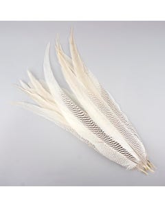 """Silver Pheasant Tail Feathers - Natural - 20 - 25"""""""