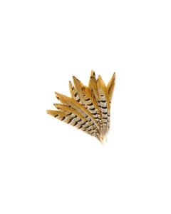 """Venery Pheasant Tails - Natural - 8 - 12"""""""