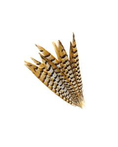 """Venery Pheasant Tails - Natural - 12 - 16"""""""
