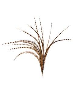 """Venery Pheasant Tails - Natural - 50 - 60"""""""