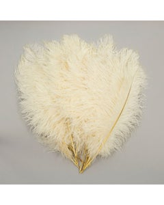 Ostrich Tails 16-18 inch  - 30 PC - Ivory