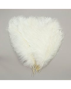 Ostrich Tails 16-18 inch  - 30 PC - White