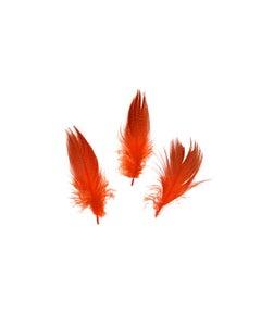 Duck Plumage Mallard Feathers - Hot Orange