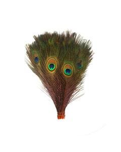 "Bulk Peacock Eye Feathers (Full Eye) Stem Dyed  100 pc - 8-15"" -  Orange"