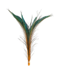 Peacock Swords Stem Dyed - Orange