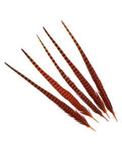 """Ringneck Pheasant Tails 20-24"""" Dyed -5pcs - Orange"""