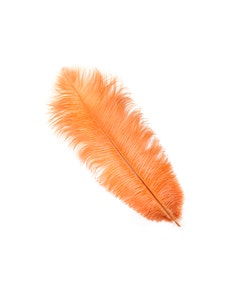 Ostrich Feather Drabs - 12 pieces 13-16 inch - Cinnamon