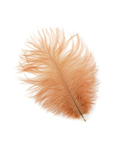 "Ostrich Feather Drabs 4-8"" - 12pcs Cinnamon"