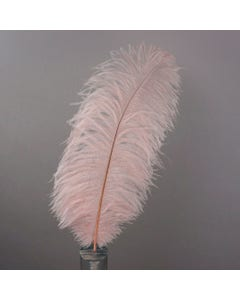 """Ostrich Feathers - Drabs Selected - 17"""" -12PCS - [Premium Top Quality] Champagne"""