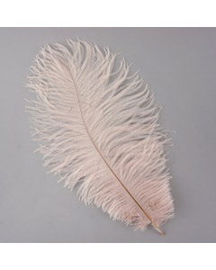 Ostrich Feather Drabs - 1/4 pound (approx. 60 pieces) 13 -16 inch - Champagne