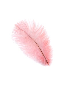 Pink Ostrich Drabs feather plumes
