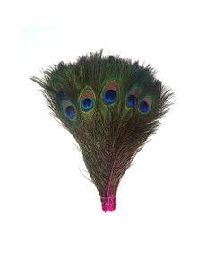 """Bulk Peacock Eye Feathers (Full Eye) Stem Dyed  100 pc - 8-15"""" -  Shocking Pink"""