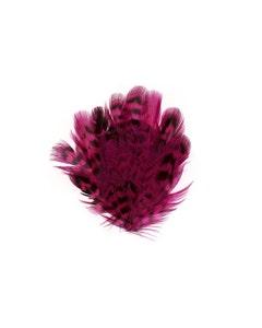 Female Ringneck Feather Pad - Shocking Pink