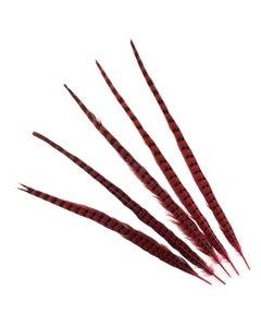"""Ringneck Pheasant Tails 20-24"""" Dyed -5pcs - Shocking Pink"""