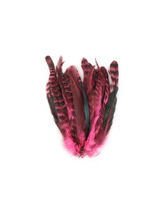Rooster Coque Tails-Chinchilla Pink Orient