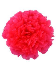 Parried Turkey Ruff Feathers -  1/2YD - Shocking Pink