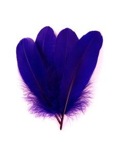 Bulk Goose Pallet Feathers 6-8 Inch - 1/4 LB - Regal