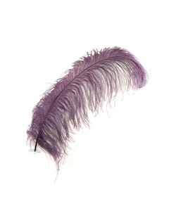 Ostrich Prime Femina Feathers - 6pc - 17 - 25 Inches  - Amethyst