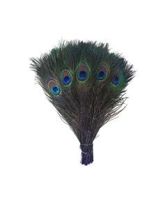"Bulk Peacock Eye Feathers (Full Eye) Stem Dyed  100 PC 8-15"" - Regal"