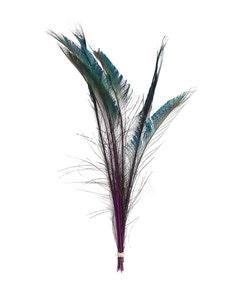 Peacock Swords Stem Dyed - Purple