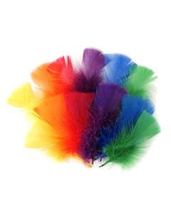 Loose Turkey Flats Section Dyed - Rainbow Mix