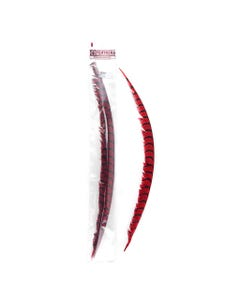 Lady Amherst Pheasant Tails Red