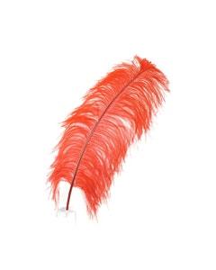 Ostrich Prime Femina Plumes - Red