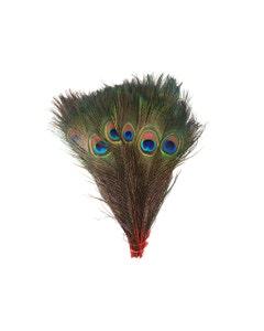 "Bulk Peacock Eye Feathers (Full Eye) Stem Dyed  100 PC  8-15"" -  Red"
