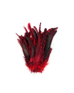 Rooster Coque Tails-Chinchilla Red