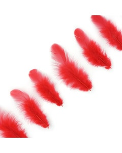 Rooster Plumage-White-Dyed - Red