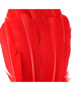 Turkey Quills Dyed - Red