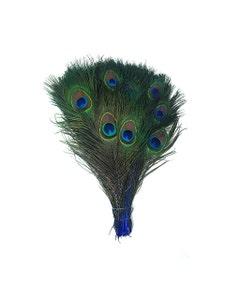 Peacock Tail Eyes Stem Dyed - Royal