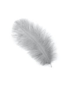 """Ostrich Feather Drabs-4-8""""-12pcs Silver"""