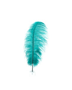 """1 PC PKG Ostrich Feathers  Drabs Dyed 17"""" - Teal"""