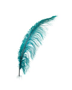 Teal Ostrich Feather Spads