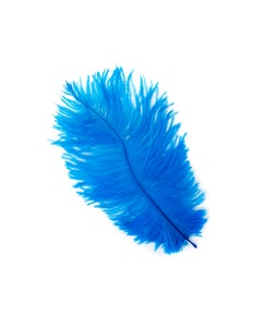 """Ostrich Feather Drabs 4-8"""" - 12pcs Dark Turquoise"""